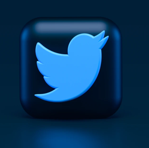 Twitter No Longer Enjoys Liability Protection in India, Says Delhi Court